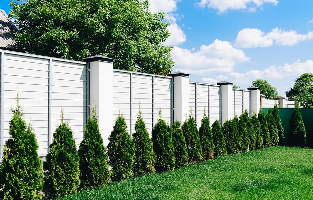 Smart Fences