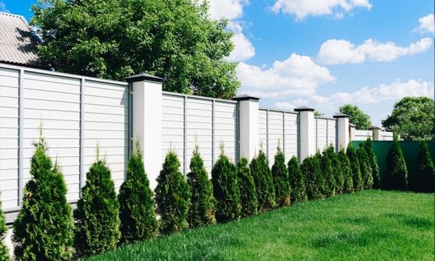 What Are the Best Smart Fence Options in 2020