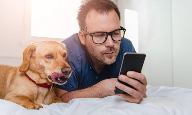 The Complete Pet Owner's Guide to Home Automation